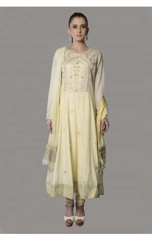 SHAPED PANEL ANARKALI